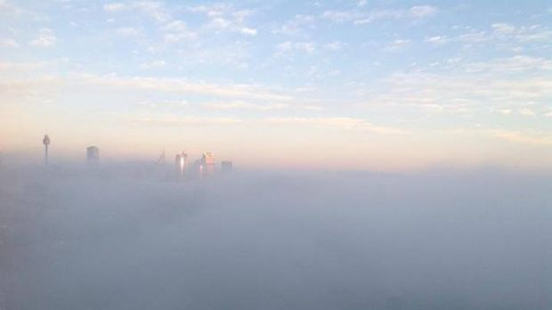 Sydney disappears: Thick blanket of fog covers the city.