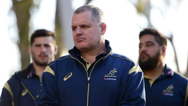 Man on a mission: Wallabies coach Ewen McKenzie.