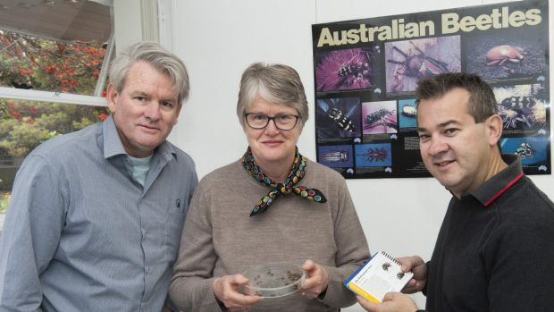 A bug's life: Department of Agriculture and Food Western Australia entomologist Rob Emery, CSIRO honorary fellow Dr Jane ...