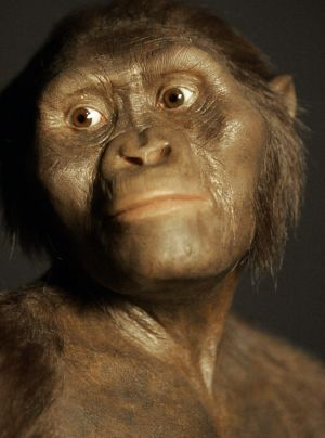 One of us: A model of the 3.2 million-year-old hominid known as Lucy reveals what our early ancestors looked like.
