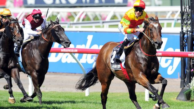 Stellar season: Lankan Rupee scores in the Newmarket of last year with Chad Schofield up.