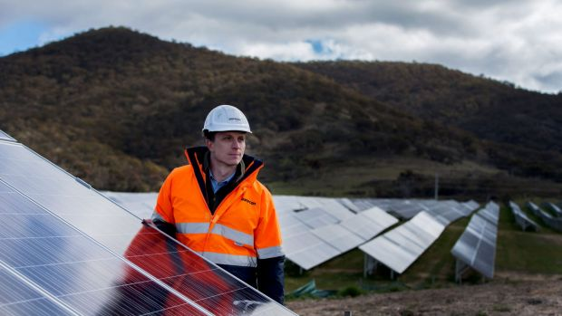 FRV site manager Nick Wain inspects the operational solar panels during the Royalla Solar Farm official opening.