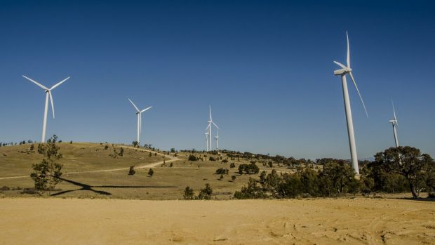 Seat of power:  Capital Wind Farm company Infigen is in the bidding to supply electricity to the national grid.