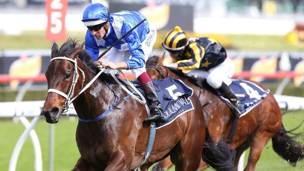 Winx looms as the one to beat in the Epsom Handicap at Randwick on Saturday.