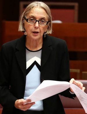 The brazenness of Greens NSW Senator Lee Rhiannon in her speech about Nigel Hadgkiss has raised eyebrows.
