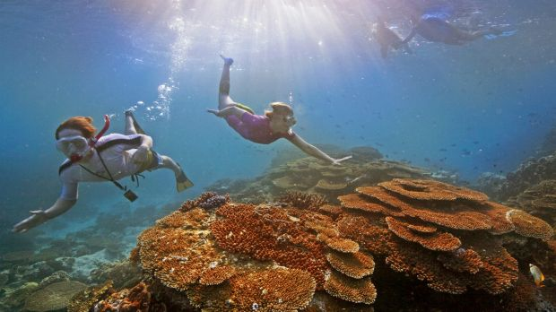 Scientists say rising temperatures and acidity are two long-term threats to the Great Barrier Reef.