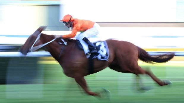Resolution: outside of big carnival meetings Sky will have exclusive coverage of Australian racing from March 16.