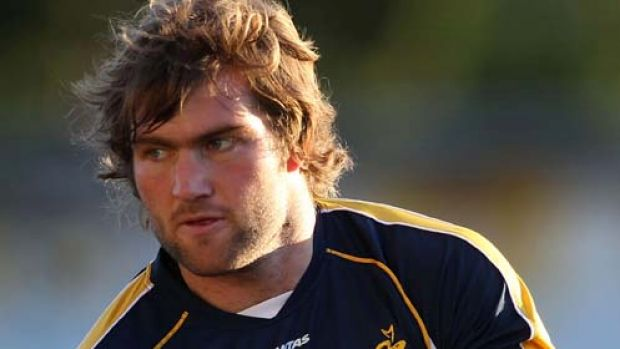 Ben McCalman returns from injury on the bench for the Western Force.