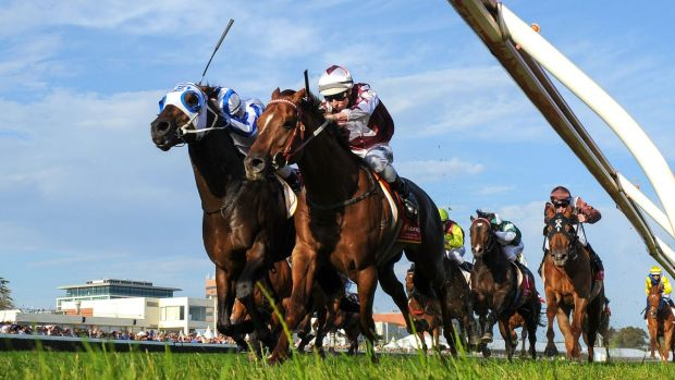 Damian Lane riding Trust In A Gust and Ben Melham on Dissident fight it out at the finish of the Sir Rupert Clarke ...