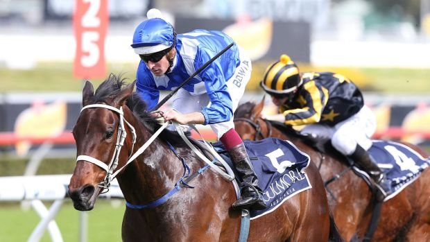 Valley preview: Top mare Winx will work at Moonee Valley on Thursday.