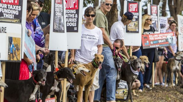 About 200 people gathered in Slacks Creek to protest the development of the track in October 2014.