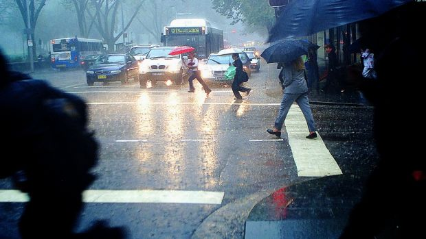 Rainy days: Thunderstorms are forecast for Sydney.