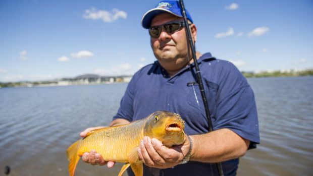 Success: Charlie Diedo catches carp from Lake Burley Griffin.