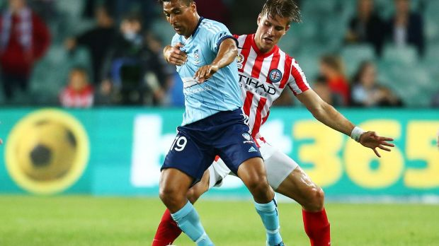 Back again: Nicky Carle helped create Sydney FC's goal against Melbourne City on Saturday.