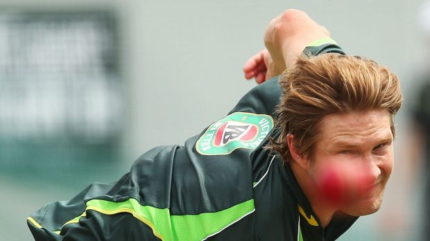 Steady aim: Shane Watson is determined to be Test ready this summer.