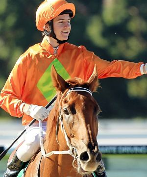 """He is right horse at the right time"": Terravista at Warwick Farm in March."