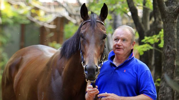 Geelong Cup chance: The late Guy Walter with Zanbagh.