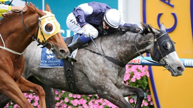 Good under pressure: Fawkner wins the Caulfield Stakes earlier this month.