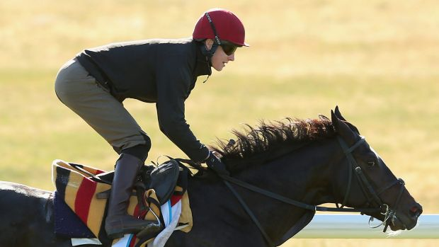 Adelaide has been sensationally backed to win the Cox Plate since arriving in Australia.