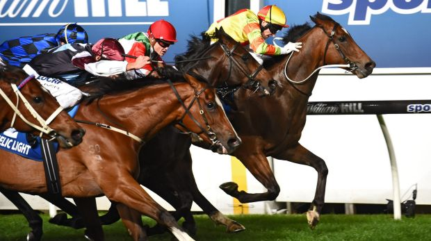 Craig Newitt riding Lankan Rupee is first past the post in the Manikato Stakes.