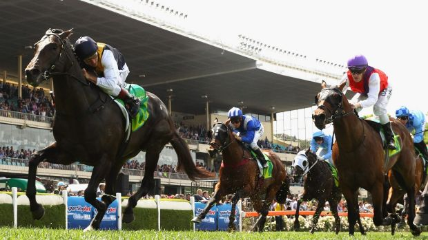 Stellar performance: Damien Oliver stokes Galaxy Pegasus (left) to victory at Moonee Valley on Saturday.