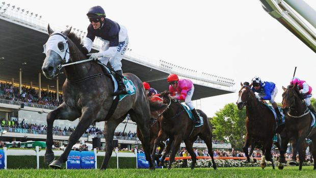Running hot: Craig Williams on Moonovermanthattan leads the field at Moonee Valley.