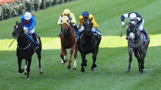Adelaide (Ryan Moore up) leads the field home in the Cox Plate on Saturday.