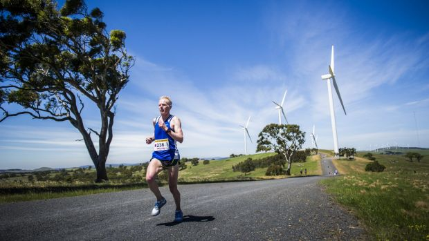 Runners during the Run with the Wind 10km fun run held at the Woodlawn Wind Farm.