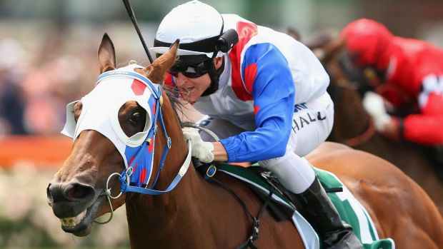 All smiles: Lumosty wins the Fillies Classic at Moonee Valley.