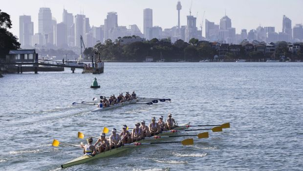 Southern comfort: Melbourne won the women's race to retain the Bella Guerin Trophy.