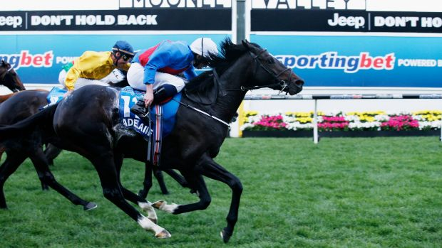 Set to chase riches at Randwick: Adelaide bolts across the line to win the Cox Plate.