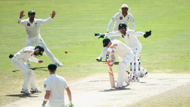 In a spin: Brad Haddin is bowled by Zulfiqar Babar in the first Test.