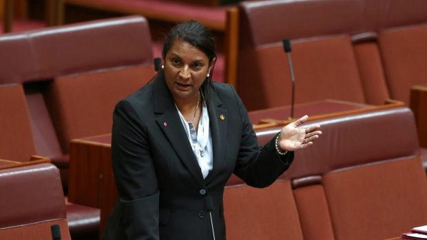 "Labor senator Nova Peris has praised Stan Grant as a ""forward thinker"" who would be an asset to any political party."