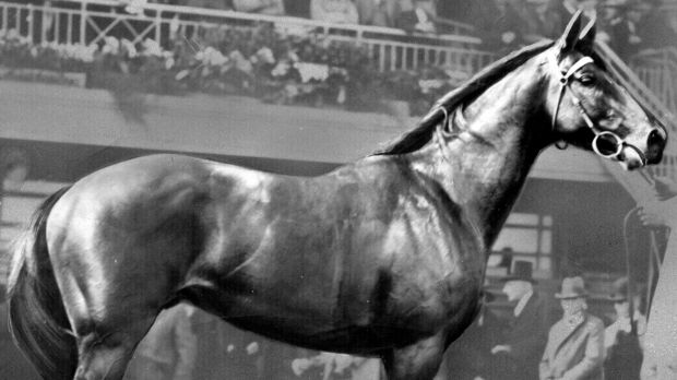 Boilover: Nightmarch, winner of the 1929 Melbourne Cup, eclipsed a field including  Phar Lap.