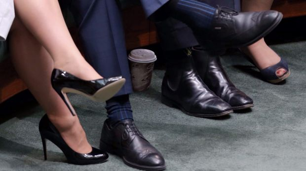 The culprit: The offending coffee cup, hidden behind Christopher Pyne's feet.
