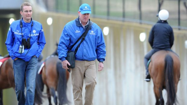 Trainer John O'Shea in a thoughtful mood after a trackwork session at Flemington.