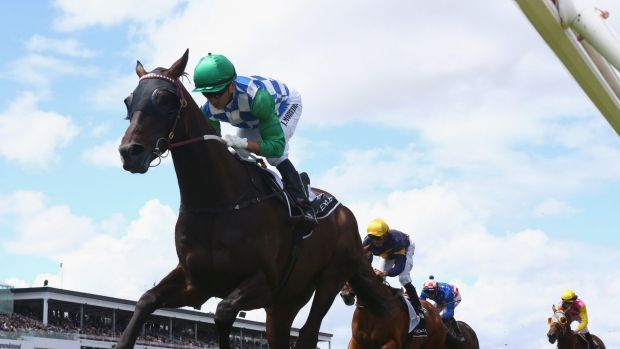 Brazilian flair: Joao Moreira pilots Signoff to a Lexus Stakes win, and with it a Melbourne Cup start.