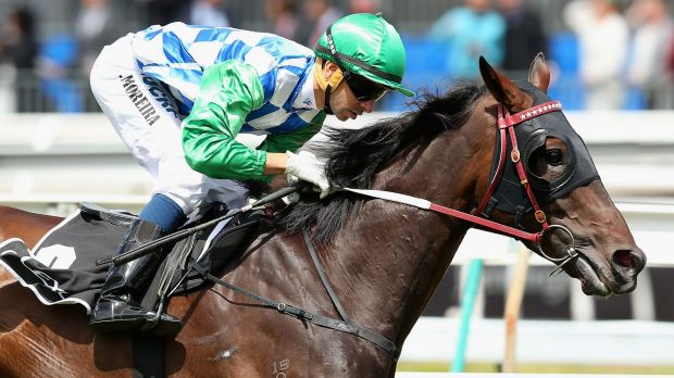 Cup bound: Signoff, ridden by Joao Moreira, races into the Melbourne Cup field with a big win in the Lexus Stakes.
