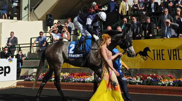 Nicholas Hall on Fawkner before the start of the Cox Plate on October 25.