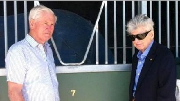 Good to go: Patrick Hogan and Bart Cummings run their eyes over Precedence on Monday.