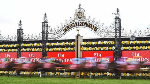 Mixed emotions: The Melbourne Cup saw jubilation for some but devastation for pre-race favourite and now deceased Admire ...