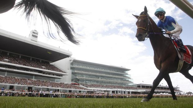 Admire Rakti finishes last in Tuesday's Melbourne Cup. The horse collapsed and died shortly thereafter.