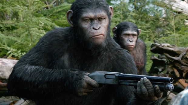 Andy Serkis considered for international AACTA for his movie <i>The Dawn of the Planet of the Apes</i>.