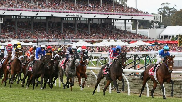 Leader of the pack: Zac Purton and Admire Rakti started the Melbourne Cup run strongly.