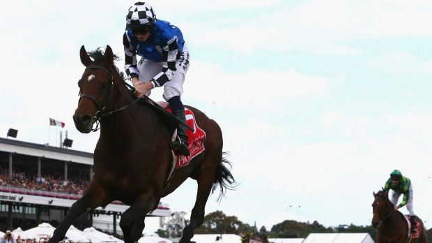 Family line: Protectionist was the second consecutive Melbourne Cup winner to be sired by the late Monsun.