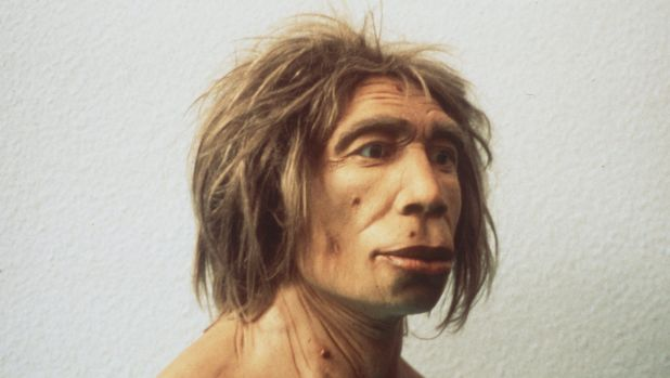 A team of international scientists has analysed the DNA of 36,000-year-old Russian man.