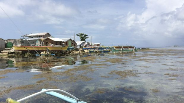The islands of Leyte and Samar are prone to typhoons. Bountiful sea life drew fisherfolk to Victory Island, which bore ...