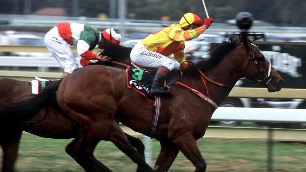 Multiple champion sire Redoute's Choice had two winners.