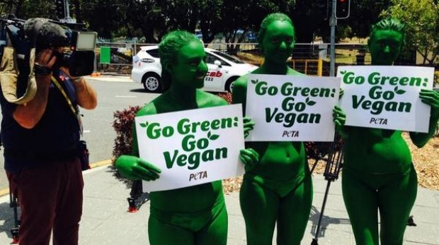 PETA members painted in green paint take to the street in Brisbane on November 12 to urge world leaders to give up meat.