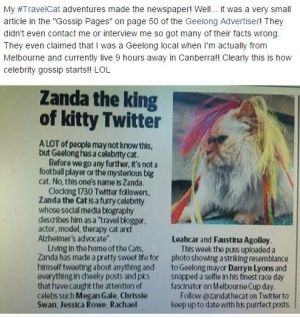 A Facebook post from Zanda the Cat about the brush with a newspaper in Geelong.